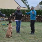 cours individuel education canine caniskol