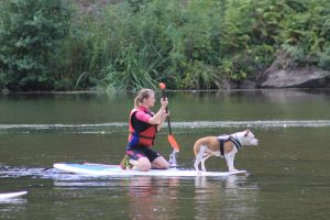 cani-paddle caniskol  5