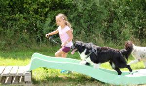atelier enfant canin caniskol 3